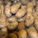 Patate Tonezza