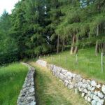 Sentiero Excalibur Tonezza