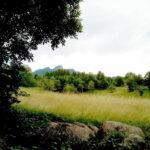 Vista Spitz lingo Sentiero Fogazzariano Tonezza